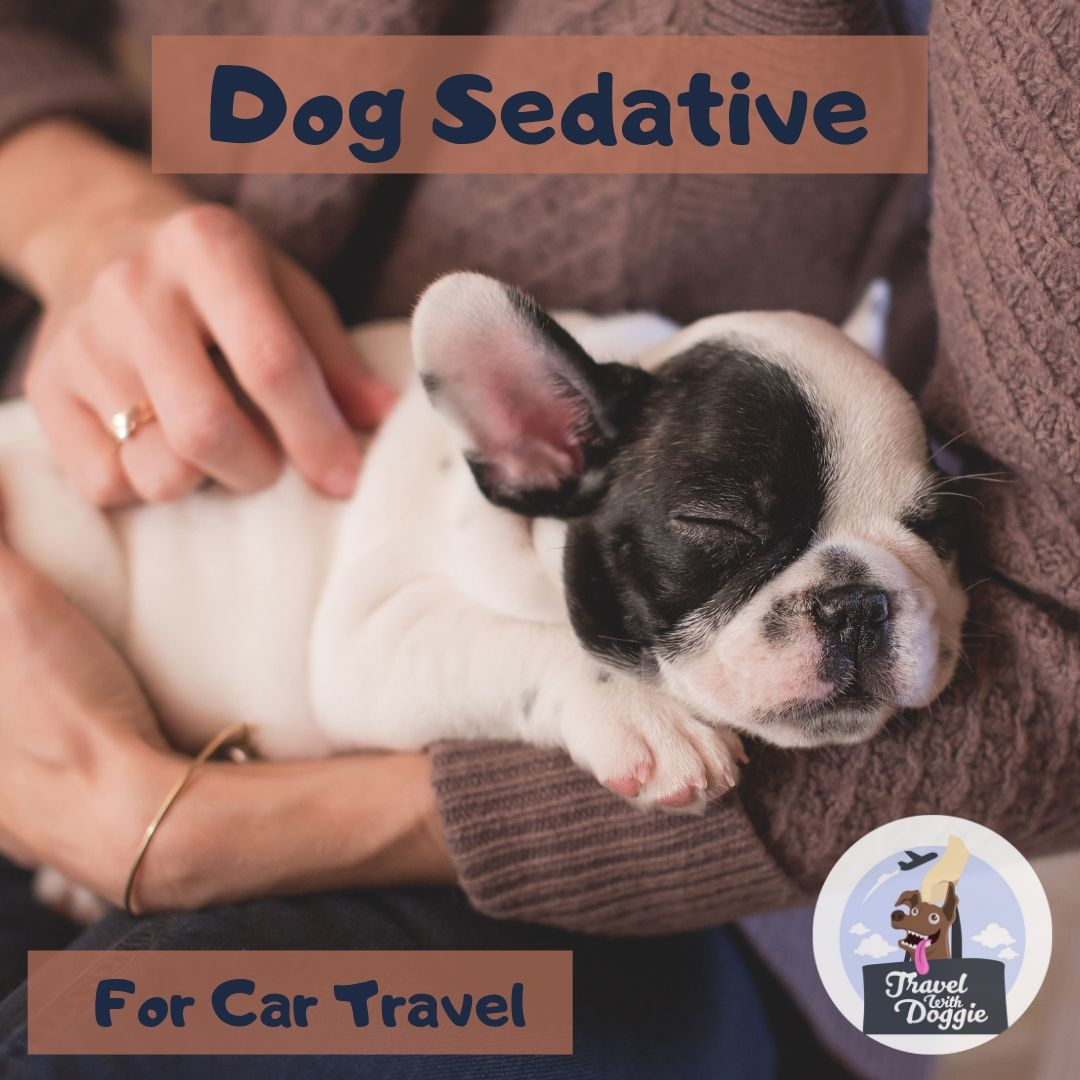Dog Sedative For Car Travel | Travel With Doggie
