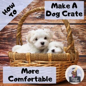 How To Make A Dog Crate More Comfortable For Road Trips | Travel With Doggie
