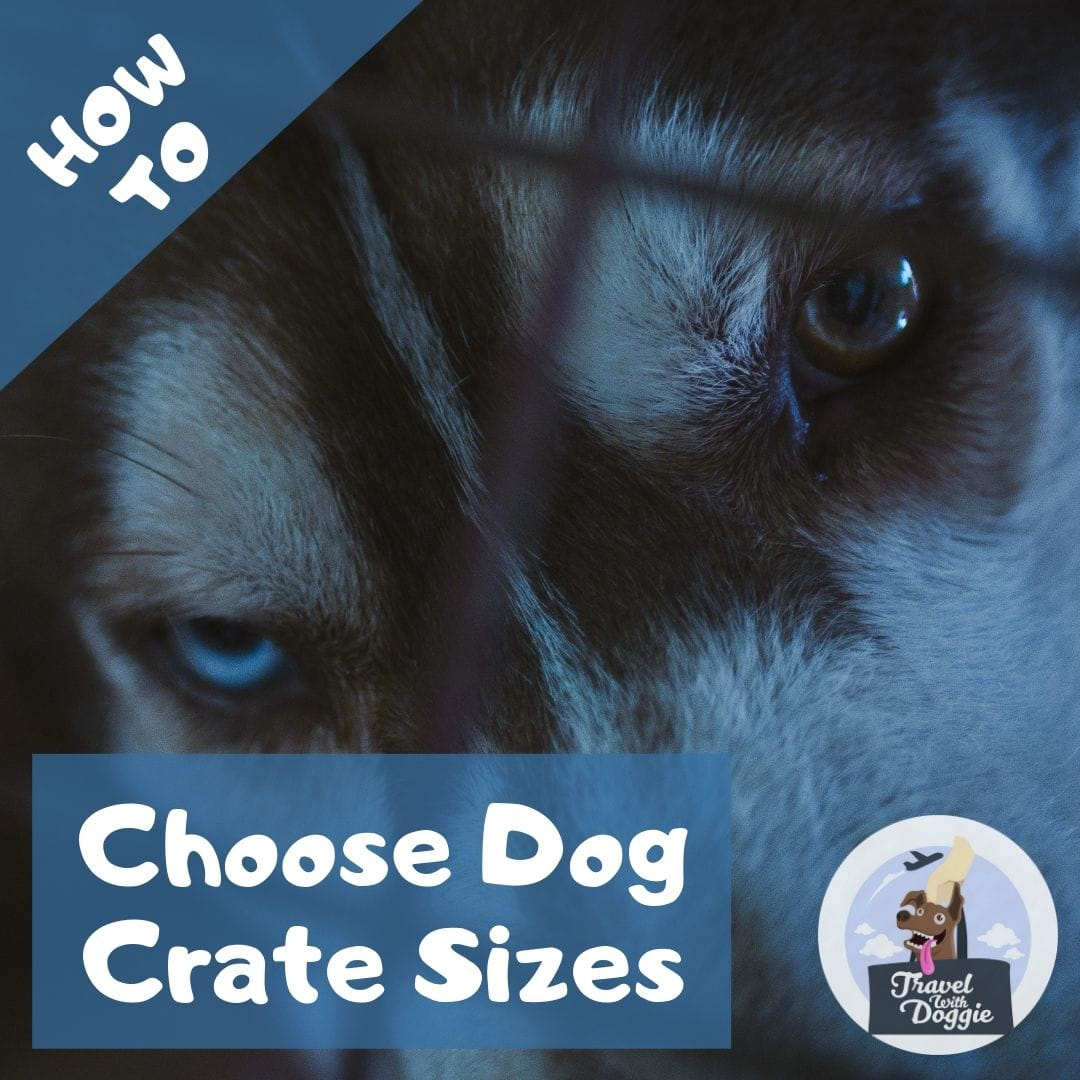 How to Choose Dog Crate Sizes | Travel With Doggie