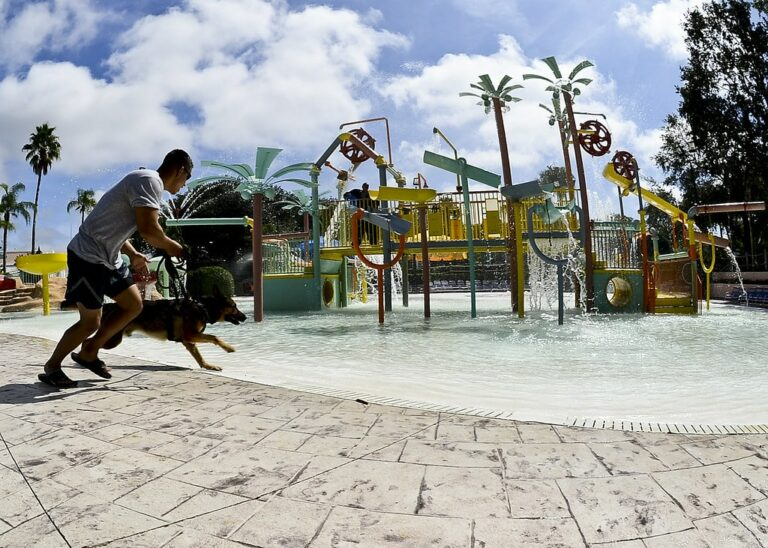 Dog Water Park | Travel With Doggie